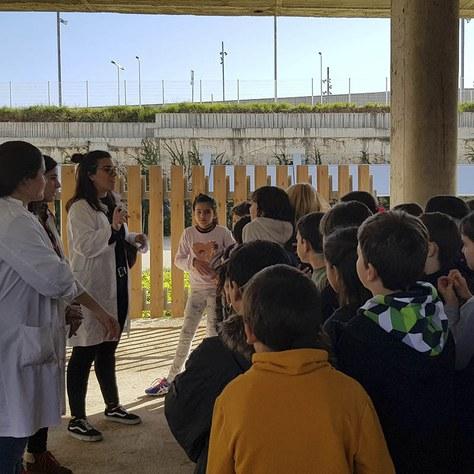 Participa organitzant activitats per l'Escolab i la Setmana de la Ciència